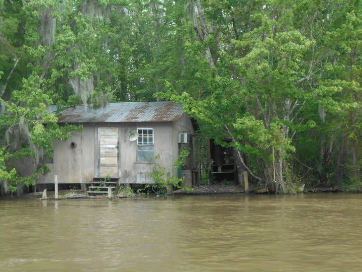 cabin in swamp