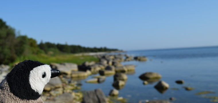 Gotland and Fårö – Swedish islands