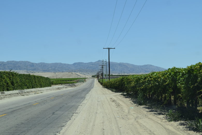 farms near Salton Sea