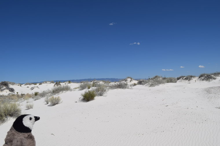 White Sands - Travel