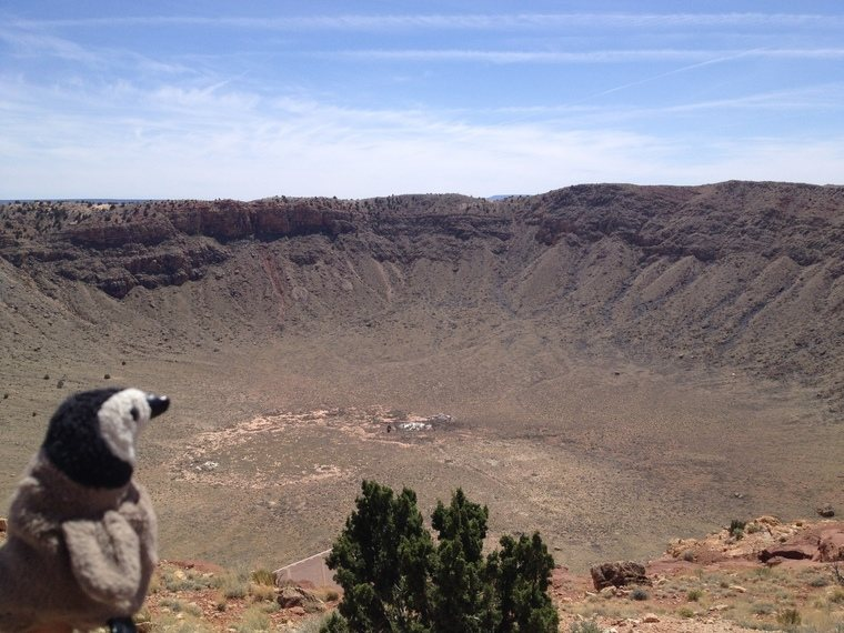 Penguin at Meteor Crater