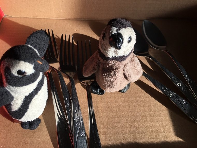 penguins and cutlery